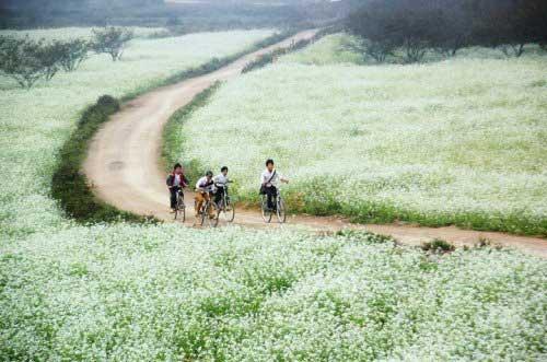 Điểm đến của các bạn trẻ thích du lịch phượt vùng ngoại ô