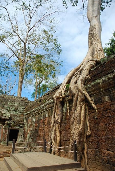 Nam Á Châu giảm giá chỉ còn 2.700.000đ tour đi Campuchia