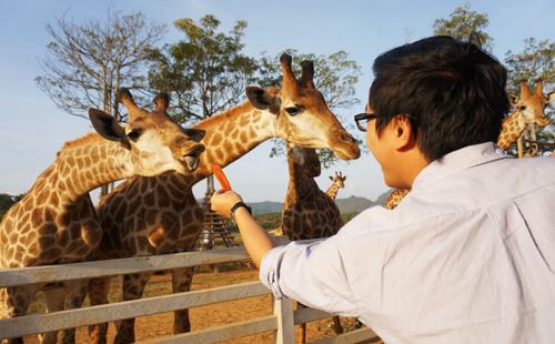 Nét đẹp dịu dàng thơ mộng Chiang Rai – Thái Lan