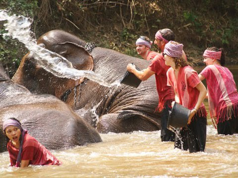48h trải nghiệm tại Chiang Mai – Thái Lan