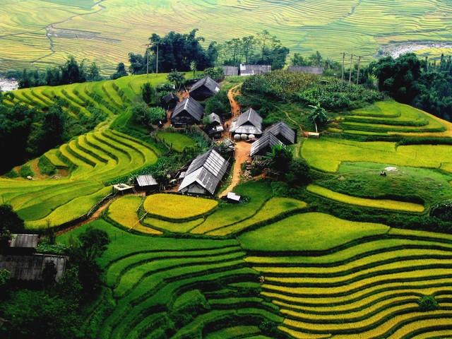 Những địa điểm du lịch thú vị nhất ở Việt Nam được khách du lịch ưa thích