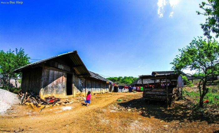 Thiên đường Mộc Châu vào ngày tháng 10