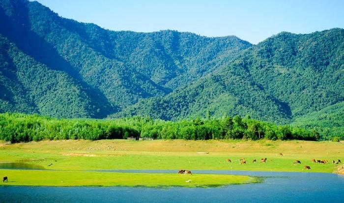 Tới Đà Nẵng, tận hưởng thảo nguyên xanh đẹp
