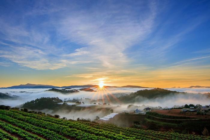 Mùa thu ở Đà Lạt hấp dẫn khiến người ta mê mẩn