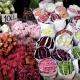 Khám phá khu chợ hoa nổi tiếng Pak Klong Talad nổi tiếng tại Bangkok