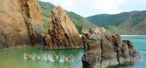 Kỳ Co – Nơi biển đảo đẹp mê hồn ở Quy Nhơn