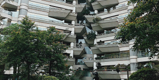 Đến Đài Loan nhớ leo núi Voi để ngắm Taipei 101