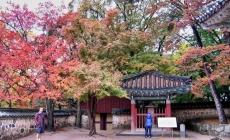 Những điểm nổi bật ở du lịch Hàn Quốc khiến khách du lịch thích thú
