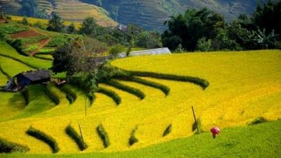 Đến Lai Châu, trải nghiệm một cảm giác phiêu lưu thú vị