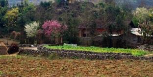 Những điểm đến lý tưởng trong những ngày mùa xuân tươi đẹp