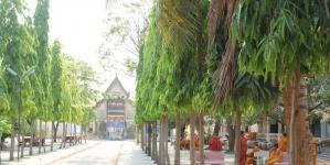 """Thú vị """"thành phố tiếng chim"""" – Battambang, Campuchia"""