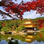 5 điều làm bạn nhớ nhung khi tới du lịch Kyoto