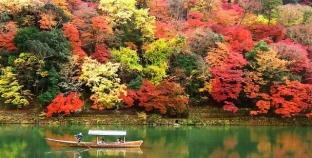 Lịch đi lá vàng lá đỏ của mùa thu Hàn Quốc, Nhật Bản
