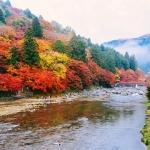 Đến thung lũng Korankei – Điểm ngắm lá vàng đẹp nhất ở Nhật Bản