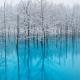 Những điểm đến mùa đông tuyệt đẹp nên tới khi du lịch Nhật Bản