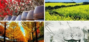 Tìm hiểu thời tiết 4 mùa Hàn Quốc