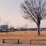 Mùa đông Hàn Quốc lãng mạn không kém với mùa thu