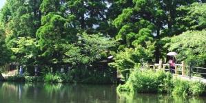 Khám phá mùa hè ở miền Nam của đất nước Nhật Bản