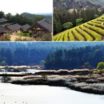 Những điểm đến lý tưởng khi Hàn Quốc vào hè
