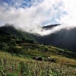 Nắng hạ lung linh giữa vùng đất Hà Giang xanh tươi