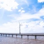 Cánh đồng điện gió Bạc Liêu – Địa điểm sống ảo lý tưởng