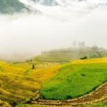 Sàng Ma Sáo – Điểm đến quyến rũ bên hương lúa