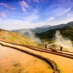 Nắng vàng nhuốm màu cho ô ruộng bậc thang vào mùa nước đổ