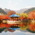 Top trải nghiệm nên thử khi đến Hàn Quốc vào mùa thu này
