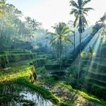 6 điểm đến du lịch lý tưởng nên đến trong năm 2019