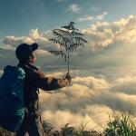 Tháng 2 nên đi đâu để có chuyến đi du lịch hấp dẫn nhất?