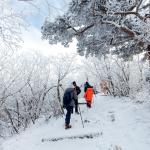 Trải nghiệm ấn tượng khó quên khi tới tỉnh Gangwon Hàn Quốc