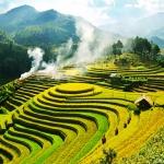 Tới Mù Cang Chải vào tháng 9 để đắm say trong mùa lúa chín