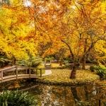 Đặt chân những thiên đường mùa thu tuyệt đẹp trên thế giới