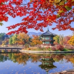 Những điểm chụp ảnh lý tưởng, tuyệt đẹp khi Hàn Quốc vào thu
