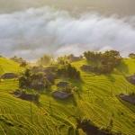 Ruộng bậc thang Hoàng Su Phì – tác phẩm của thiên nhiên và con người