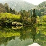 Đến Hàn Quốc, ngắm cảnh đẹp thanh bình trọn vẹn ở hồ Seryang Je
