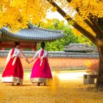 Trải nghiệm lý tưởng ở Hàn Quốc vào thu không nên bỏ